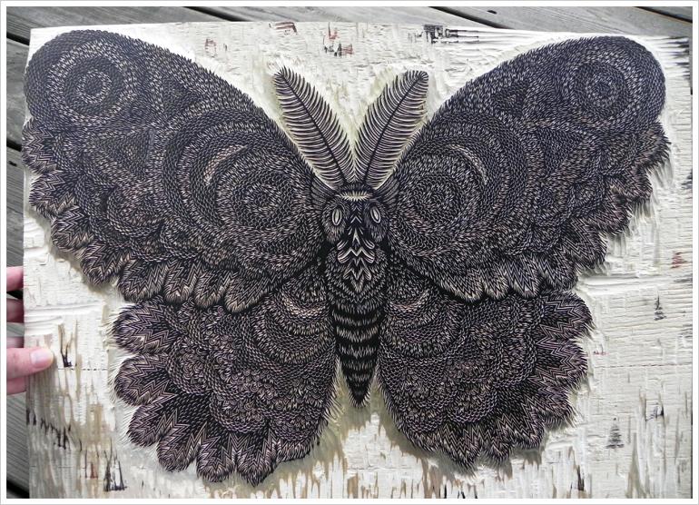 moth_keyblock_woodcut